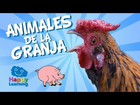 Farm Animals for Children   Learn Spanish