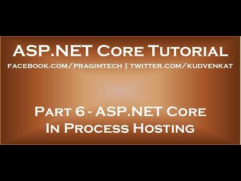 ASP NET Core in process hosting