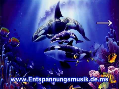 Entspannungsmusik Meer - Walgesang - Wal Musik - Unterwasser
