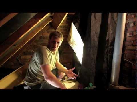 The Loft Garden: Growing Mushrooms (S01E02)