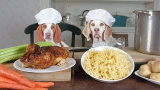 Chef Dogs Cook Chicken Noodle Soup: Funny Dogs Maymo & Potpie