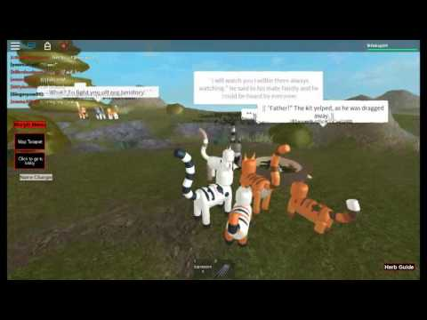 Mourning in Roblox Warrior Cats: Forest Territory