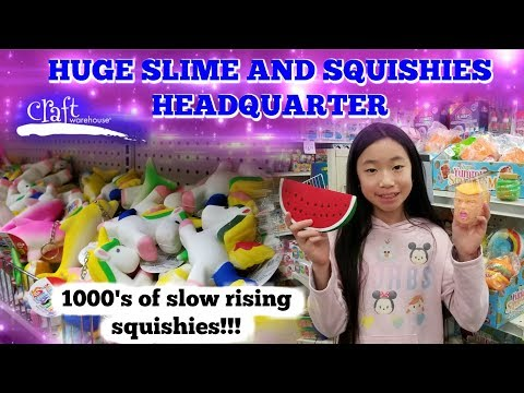 WE FOUND THE SQUISHIES AND SLIME HEADQUARTER AT THE CRAFT WAREHOUSE!!! 1000'S OF SQUISHIES & SLIME!!