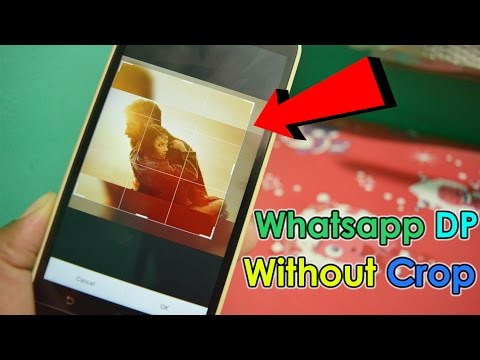 How to Set Any Image In WhatsApp Profile Picture Without Crop