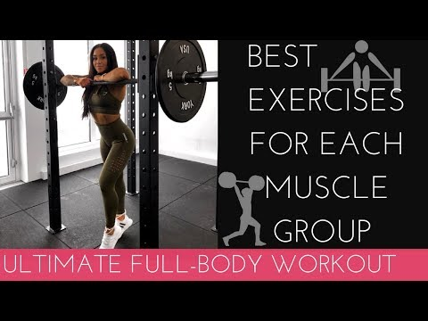 MY FAV EXERCISES FOR EACH MUSCLE GROUP - ULTIMATE FULL BODY WORKOUT!