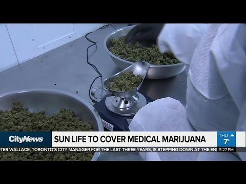 Business Report: Sun Life Financial to cover medical marijuana