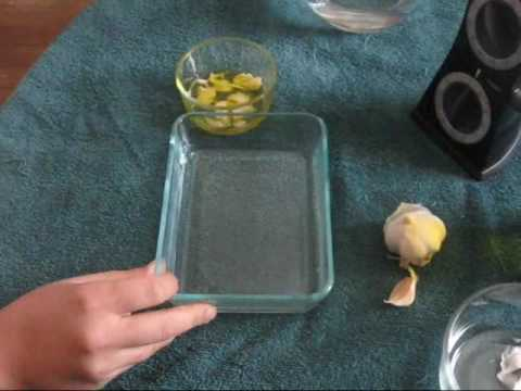 How to Make a Garlic Oil Infusion