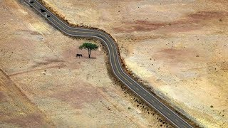 Amazing Ways Mankind Has Respected The Natural World