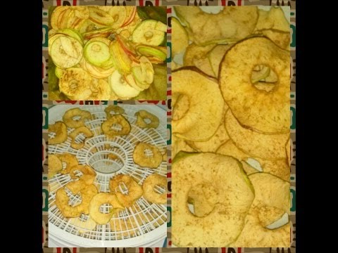 Weight Loss Journey: Dehydrated  Apple Chips!