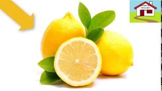 C'est ce qui se passe lorsque vous utilisez du citron le miembre pour, les recherches vous laisseron