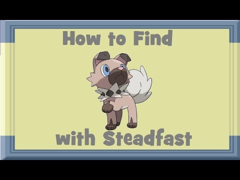 How to Find: Rockruff with Steadfast