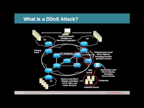 What is a DDoS Attack?