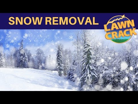 Snow Removal Pricing Tips ❄❄❄ | How to Profit from Snow Removal Services | Professional Snow Removal