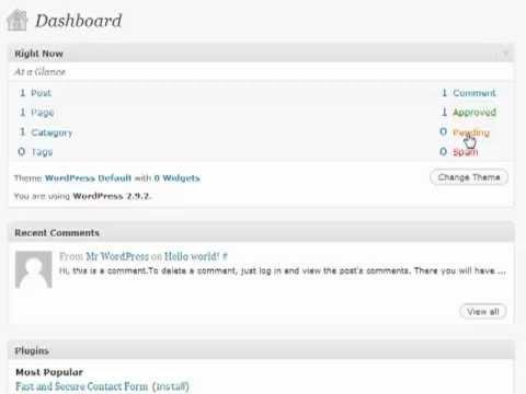 WordPress Tutorials The Dashboard