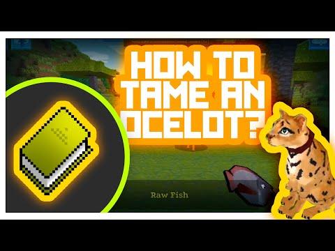 RealmCraft #GameTutorials - How to Tame?  (Ocelot taming)