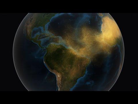 NASA descobre como o deserto do Saara alimenta a floresta amazônica