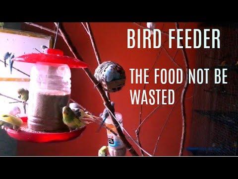 how to make a bird feeder  DIY homemade plastic jar