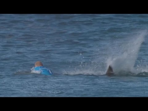 Mick Fanning after shark attack: I'll surf again for sure