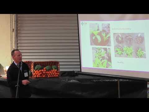 Forthside Open Day 2017 - Dr Jason Scott, TIA