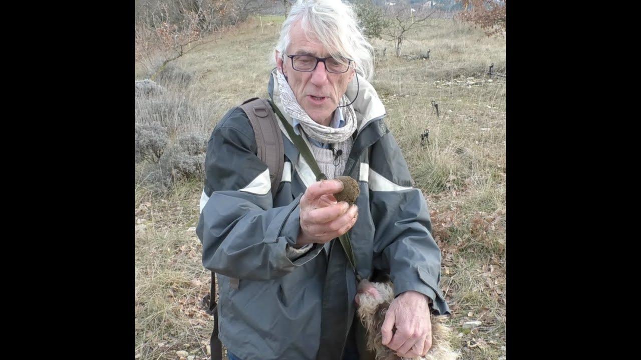 Bernard Pelurson, ses chiens et les truffes
