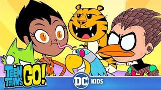 Teen Titans Go! En Latino   Super Animales   DC Kids