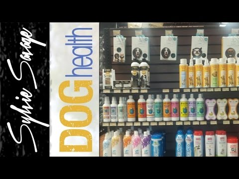Dog Shampoo - How to pick the right one