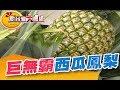水果界金雞母 巨無霸西瓜鳳梨《新台灣大體驗》第218集