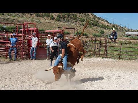 Gary Leffew Bull Riding School Student Bull Riding Compilation (Part 2/2)