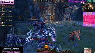 Neverwinter mod 15: Oathbound Paladin Protection Build