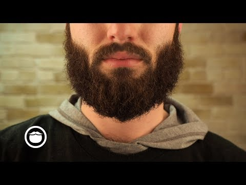 How to Tame Your Wild Beard with a Brush | YEARD WEEK 11