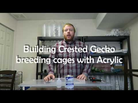 Crested Gecko Breeding Cages