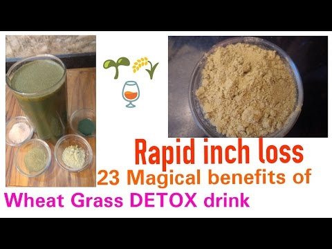 23 Wheatgrass Benefits, WHEATGRASS Powder DETOX,Wheatgrass Detox Recipes, Weightloss with WHEATGRASS