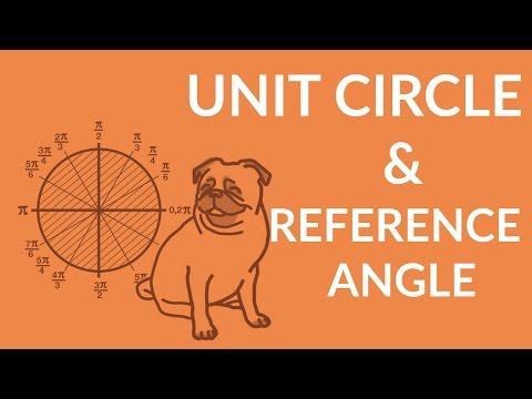 ʕ•ᴥ•ʔ Unit Circle and Reference Angle Trigonometry Explained