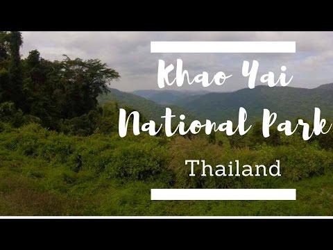 KHAO YAI NATIONAL PARK | THAILAND