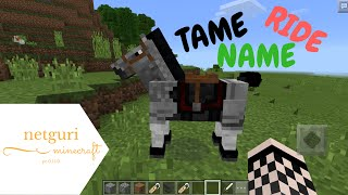 Tame Ride And Name Horses In Minecraft Pe 0150