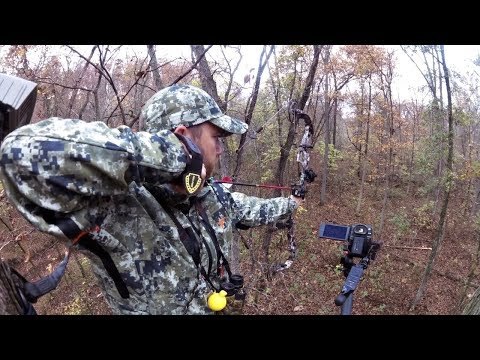 Whitetail Wednesday: QDM Practices