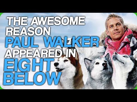 The Awesome Reason Paul Walker Appeared in Eight Below (The Air Bud Cinematic Universe)