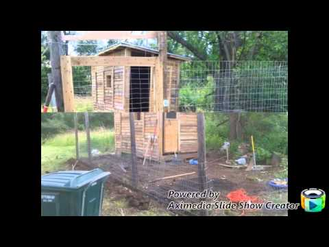 chicken coop made with pallets