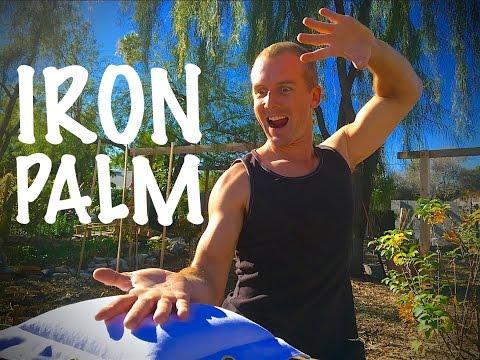 Real IRON PALM - Kung Fu Master