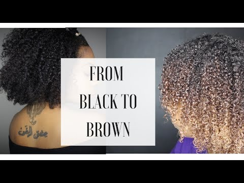 How to: From Black to Brown on Natural Curly Hair | Without Bleach
