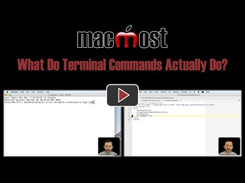 What Do Terminal Commands Actually Do? (#1640)