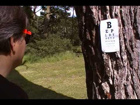 Improve Your Eyesight with the Eye Exercise Shifting With Eye Chart