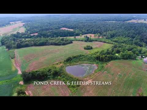 150 acres of Hunting Land for Sale in Hopkins County, KY