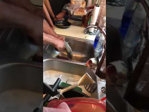 Cleaning large mouth bass 68