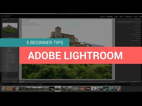 5 Beginner Tips for Editing Photos in Lightroom