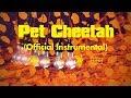 twenty one pilots: Pet Cheetah (Instrumental)