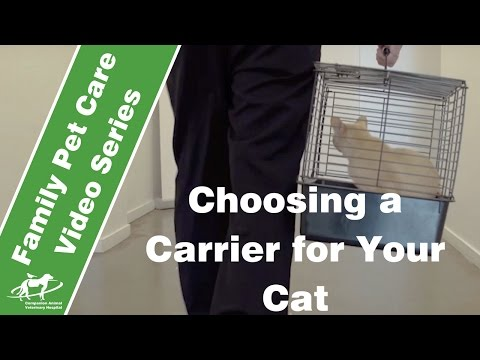 Choosing a carrier for your cat- Companion Animal Vets