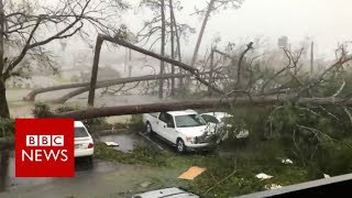 Hurricane Michael: Videos show destruction in US - BBC News
