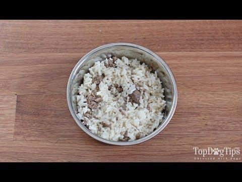 Homemade Dog Food for Struvite Bladder Stones