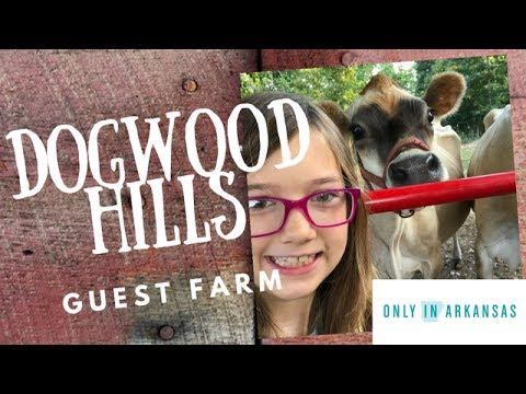 Dogwood Hills Guest Farm - Only in Arkansas